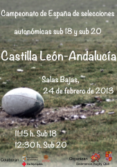 Cartel CyL Vs Andalucia 169